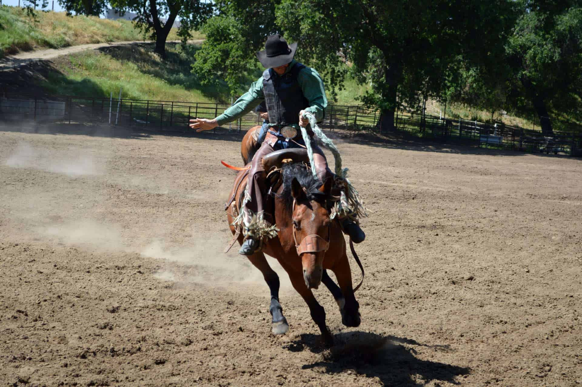 cowboy-on-horse-at-rodeo